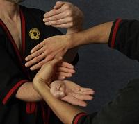wing tsun kung fu - Chi Sau