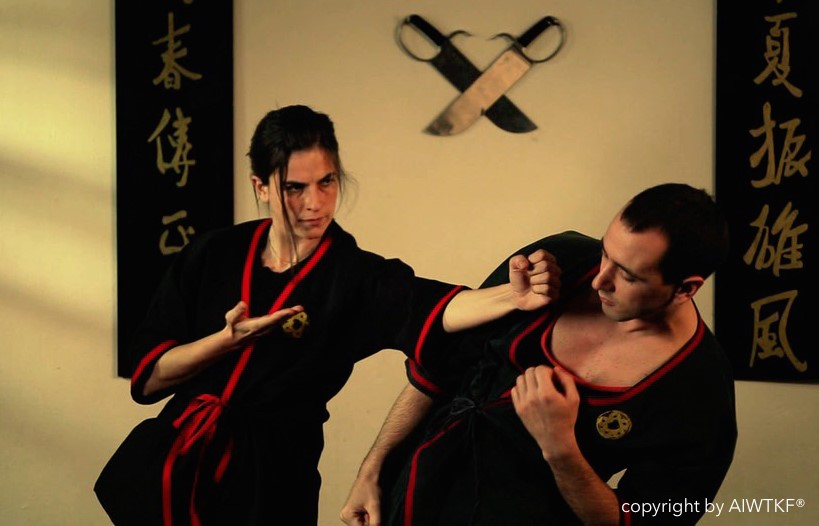 wing tsun kung fu - Applications
